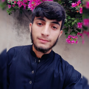 Savvy Specialist Haseeb Javed
