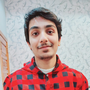 Savvy Specialist Adeel Ahmad
