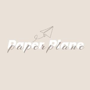Savvy Specialist Paper Plane